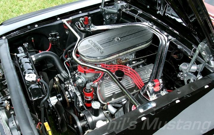 Original Shelby Car Cover